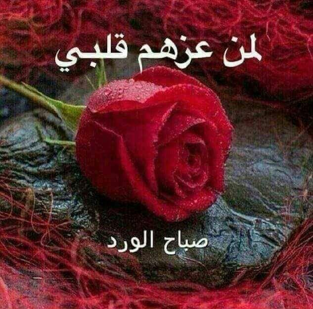 Pin By وسام عساف On صباح الخير Good Morning Flowers Templates Printable Kids Morning Greeting