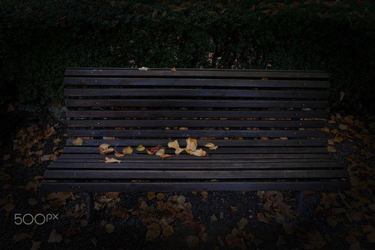 Les Feuilles Mortes - una panchina nel parco