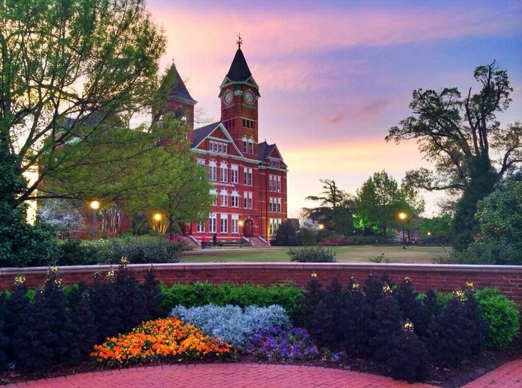 Sunset at Auburn, AUUUUU!  ~ Check this out too ~ RollTideWarEagle.com sports stories that inform and entertain. Plus Train Deck FREE online football tutorial to learn the rules of the game you love, #Collegefootball #Auburn #WarEagle