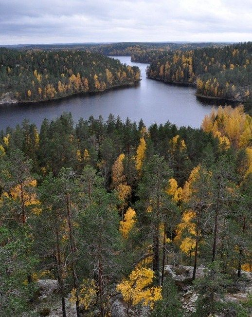 Repovesi National Park, Finland