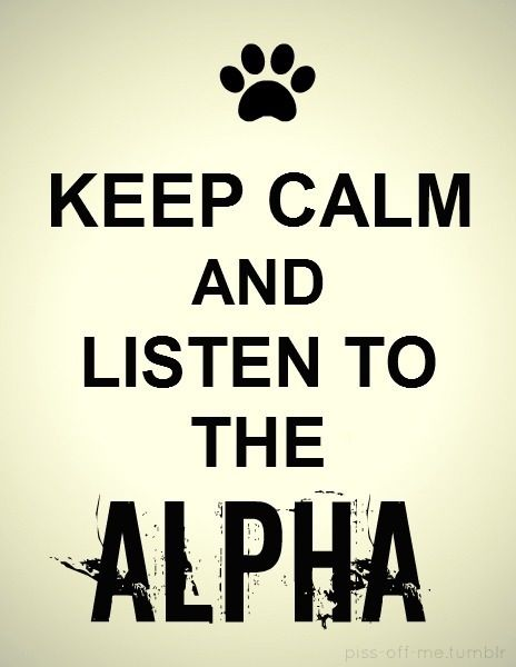 Keep Calm And Listen To The Alpha