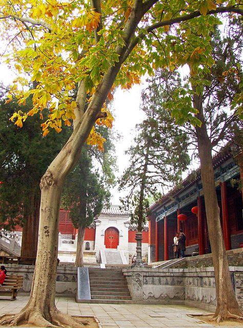 Shaolin Temple - Zhengzhou, Henan, China