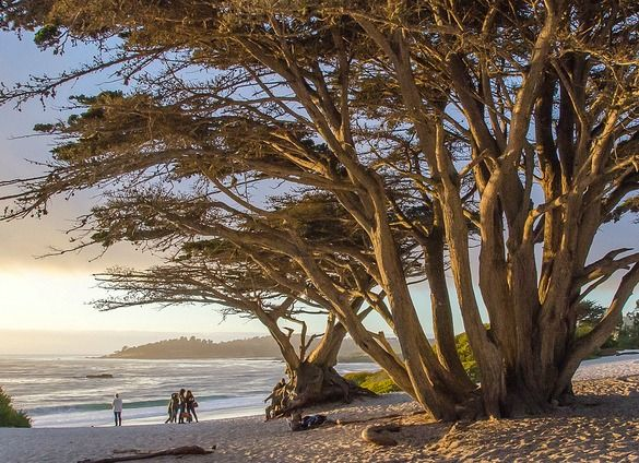 Carmel Beach: http://beachblissliving.com/best-beach-towns-united-states/