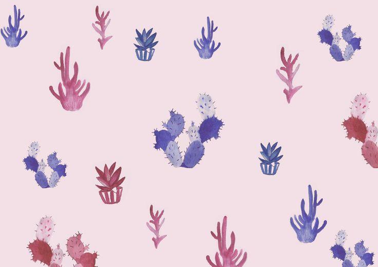 Cactus illustration for Ładnebebe