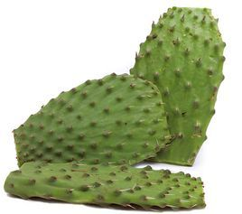Cactus leaves (nopales)