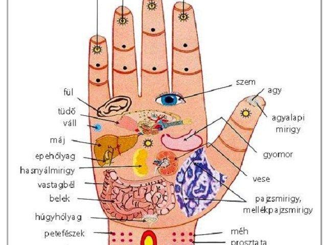 A kezünkön megoldás a vérnyomásproblémákra, hátfájásra és ízületi gyulladásokra! Mutatjuk : - MindenegybenBlog