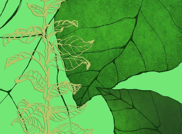 Ταπεινό χορταράκι - Κείμενο: Xριστόδουλος Σαζεϊδης - Σχέδιο: Μαρίνα Λαμπρινουδάκη