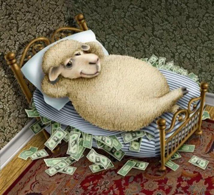 Картинки, овечка в картинках прикольная