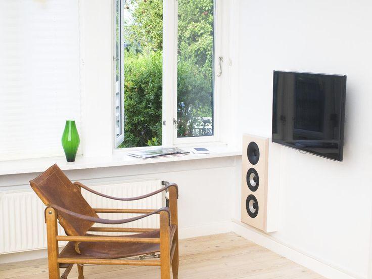 Livingroom speaker  Tips on why you should get that subwoofer
