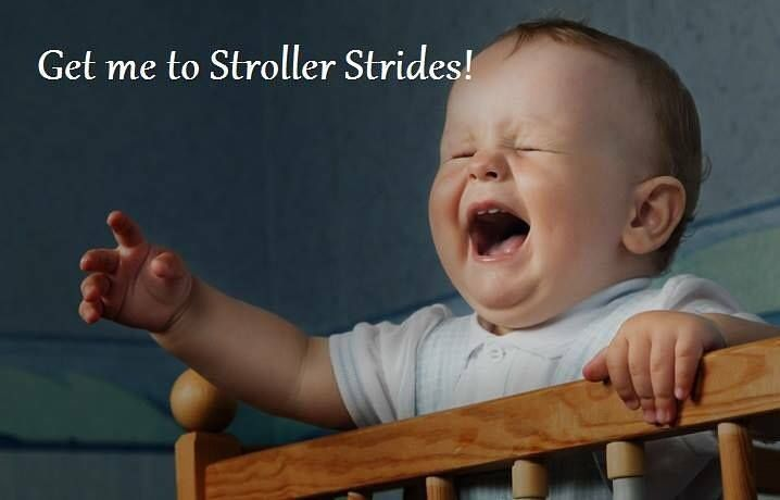 Grab your hubby's and come join us for stroller strides @springfieldtwnctr at… More
