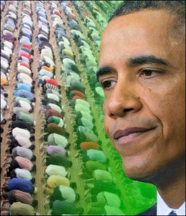 The Islamization of America in 2013