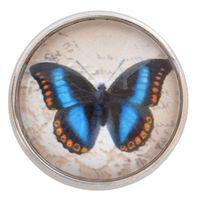Blue Morpho Butterfly Glass Nugz