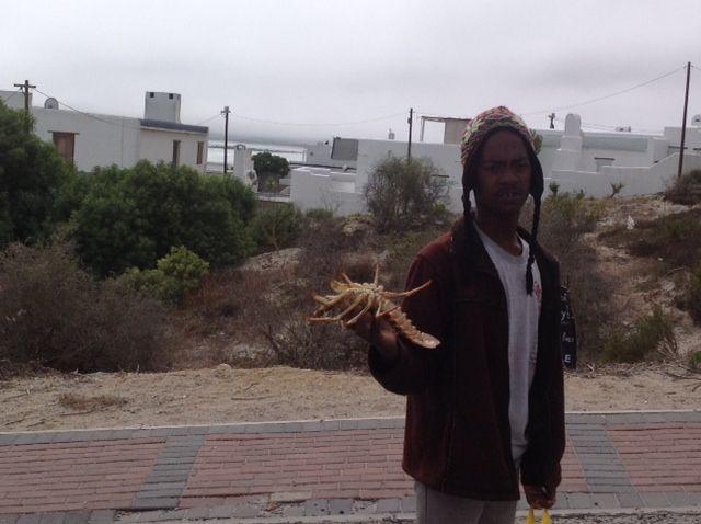 Paternoster-Anybody for crayfish ?