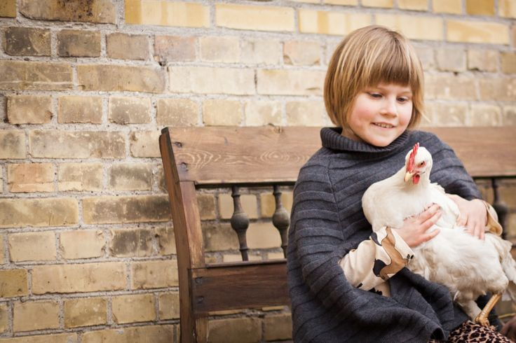 Barn med høne. Child with a chicken.