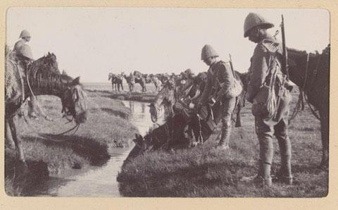British mounted troops watering their horses 1901 #BoerWar