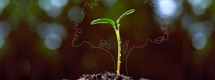 eco-sostenibilidad Estel Iberica