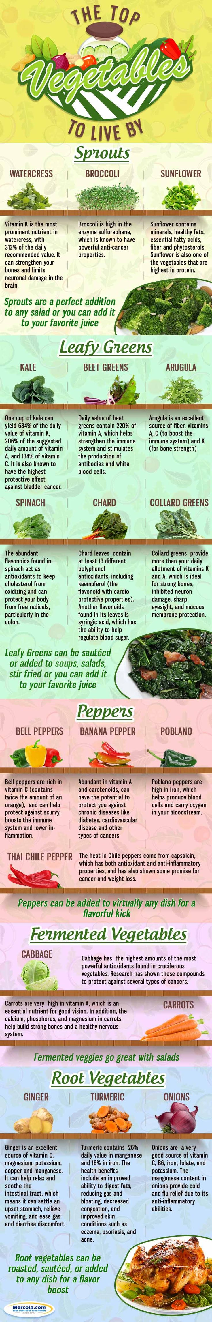 Most vegetables are very low in calories and net carbs, while being high in healthy fiber and the valuable vitamins and minerals your body needs for optimal health.