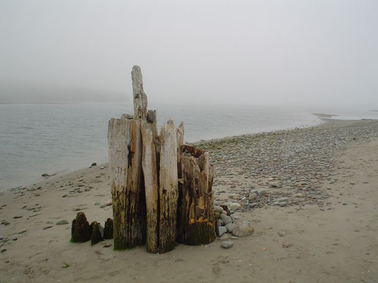 Old wharf remains, Eastern Passage, NS.