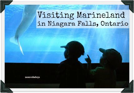 Marineland, Niagara Falls, Ontario. Great way to kick off maternity leave! We are going to have so much fun!!