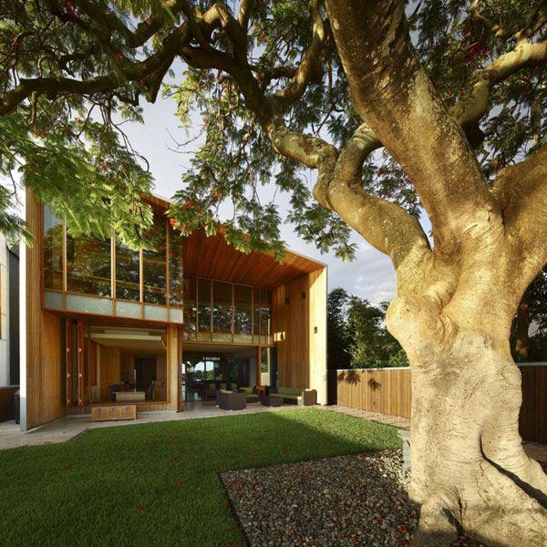 Arbour House - Richard Kirk ArchitectArbour House, Kirk Architects, Families Home, Richard Kirk, Great House, Brisbane Australia, Architecture, Outdoor Spaces, Modern Home