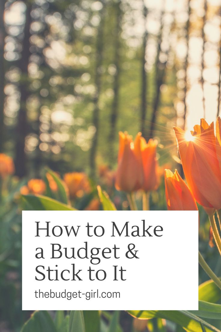 How to make a budget and stick to it. Learn how we became debt free.