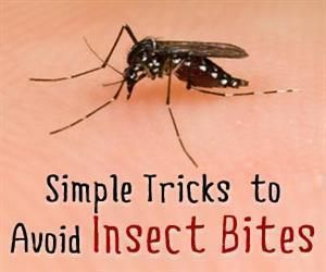 insect bite treatment