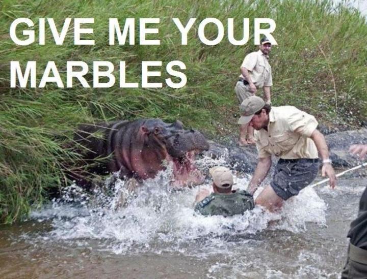 Hungry hungry hippo! HAHA!