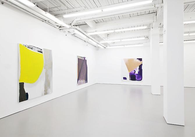 Monique van Genderen - September 6 - October 20, 2012 - D'Amelio Gallery