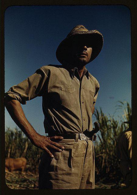 1941 Man in sugar-cane field during harvest, vicinity Rio Piedras, Puerto Rico by Jack Delano, Library of Congress