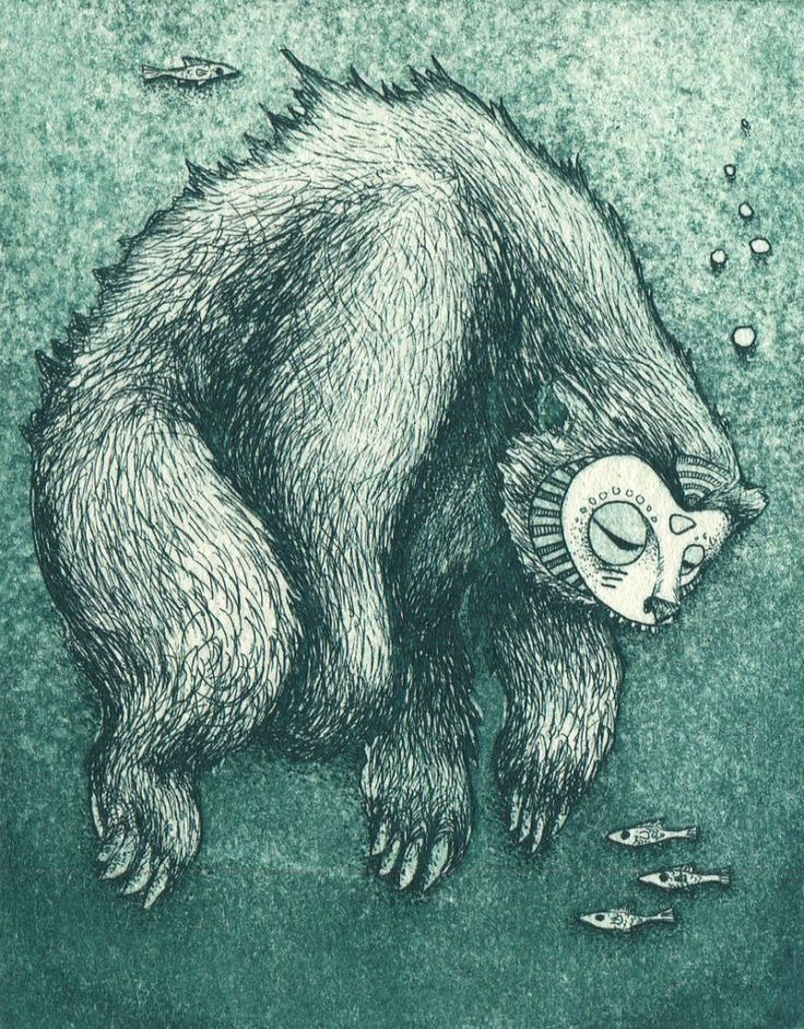 water bear hard ground and aquatint on hahnemuhle paper