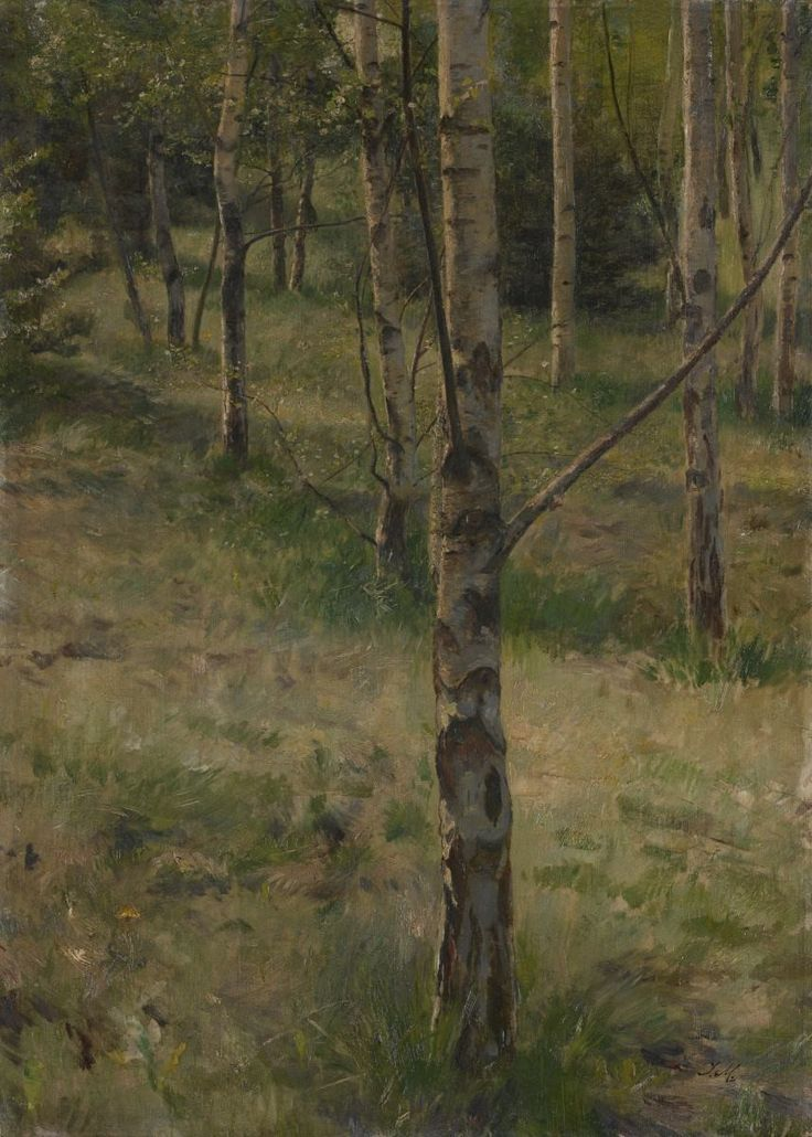 Julius Eduard Mařák, Březina, 1879