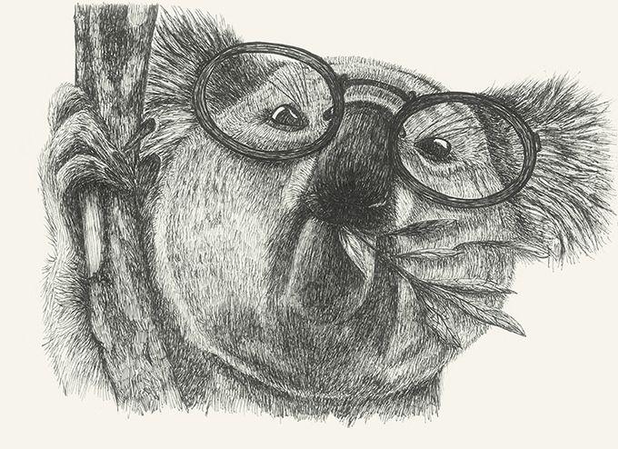 https://flic.kr/p/DeMutQ   Mr Coala #coala#animals#drawing#glasses by Leo Bellei