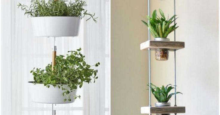 Si tienes poco espacio en casa, una idea genial es colgar las plantas para decorar sin ocupar mucho.