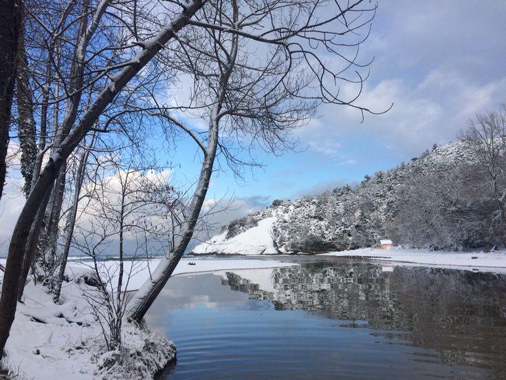 winter Blacksea kapısuyu nature