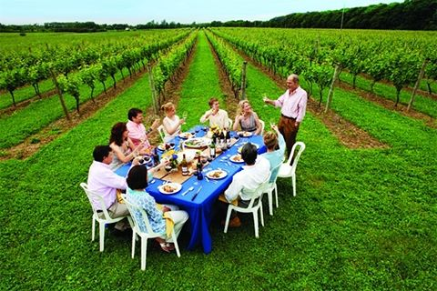 North & South Forks of Long Island, New York Wine Travel Guide