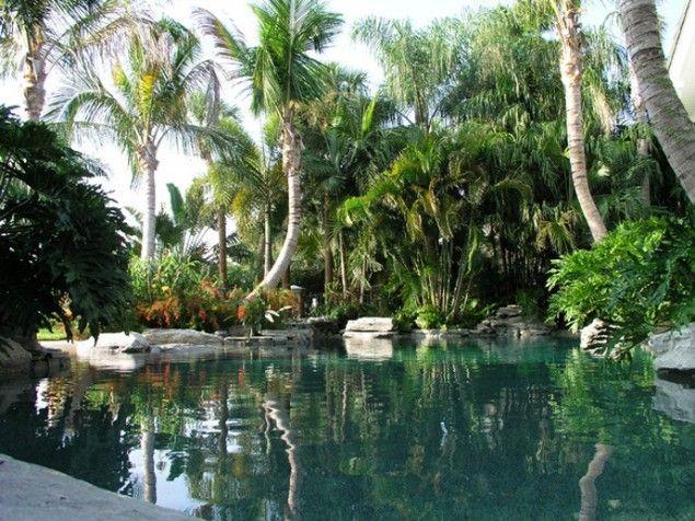 149 best tiki culture images on pinterest tiki tiki for Tropical pool gardens