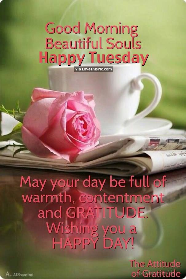 Good Morning Beautiful Souls, Happy Tuesday
