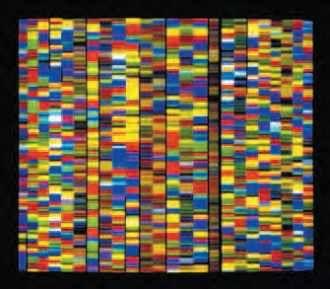 Visualisation des séquences d'ADN dans le but de décrypter le génome humain.