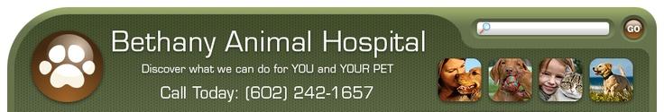 Bethany Animal Hospital - 2524 West Bethany Home Rd. Phoenix, AZ 85017 - 602-242-1657