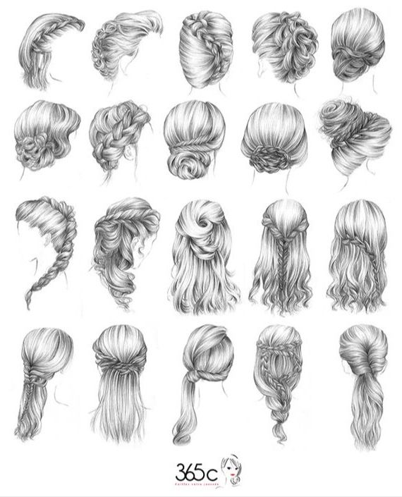 In girl's bathroom put a pencil drawing of how to do french, fishtail, and english braids. Frame it and hang on the wall. Love the look of this drawing!