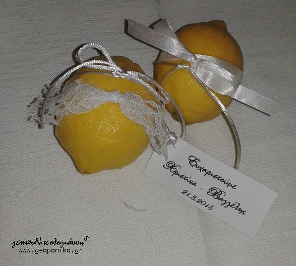 Thank you for attending our wedding! lemons!!!