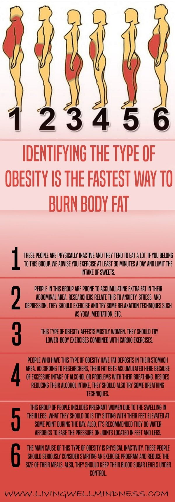 You probably know someone who's overweight or obese, as obesity has become a global modern health problem.