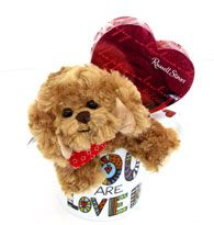 """PUPPY - CHOCOLATE -  MUG  """"You are Loved"""" www.sendateddy.net #sendateddy"""
