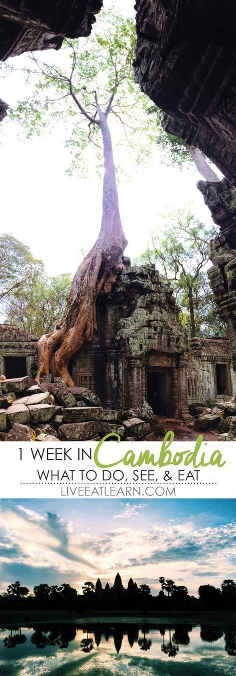Things to do, see, and eat in a 1 week trip to Cambodia! From the laid back rural sea life of Kep and Kampot to the beach paradise of Koh Rong to the ancient world famous Buddhist temples of Angkor Wat in Siem Reap.