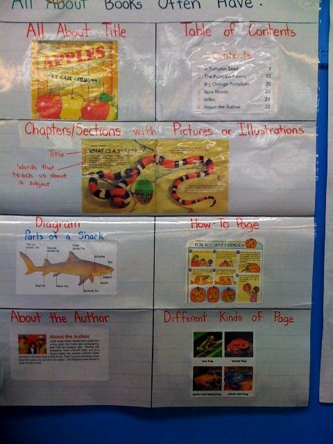 Best Writing Anchor Charts Images On   School