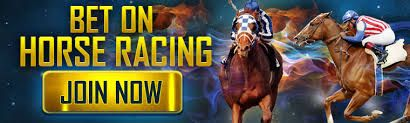 Horse racing is undoubtedly one of New Zealand's favourite sports to bet on. This thrilling sport offers punters a wide range of betting possibilities. Horse racing bettting tips is usefull and important to new bettors. #horseracingbettingtips mobilebetting.kiw...