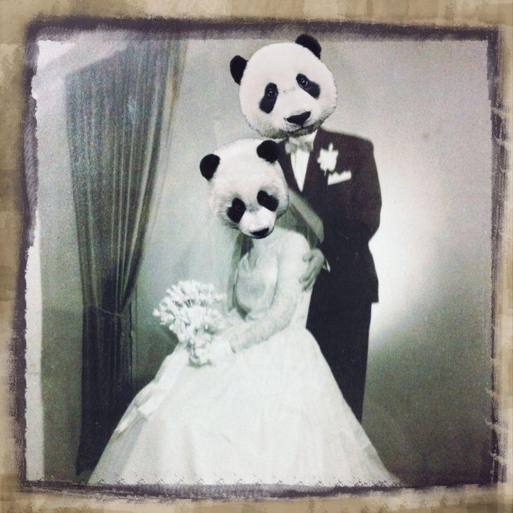 Wedding panda