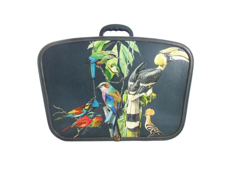 Small+Aviary+up-cycled+Suitcase, £250.00