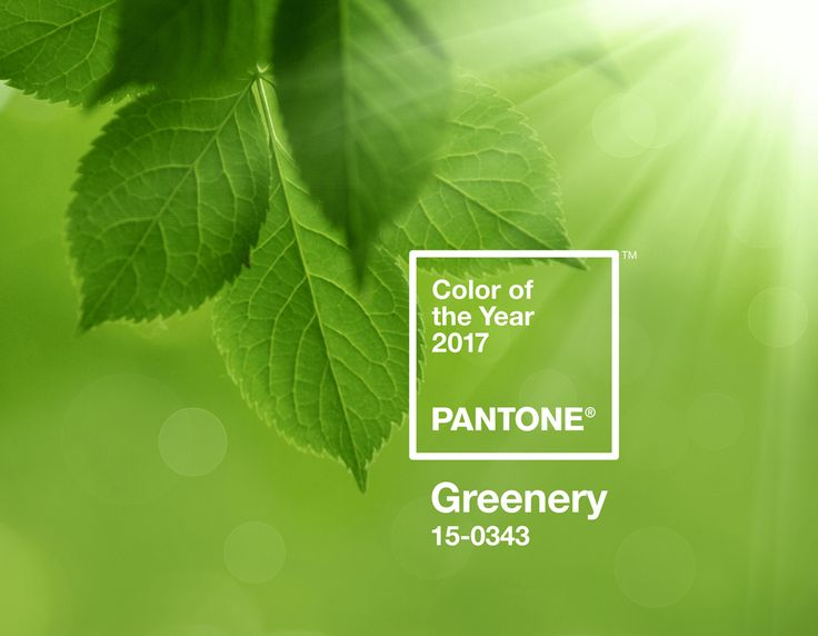 Greenery – Pantone color of the year 2017