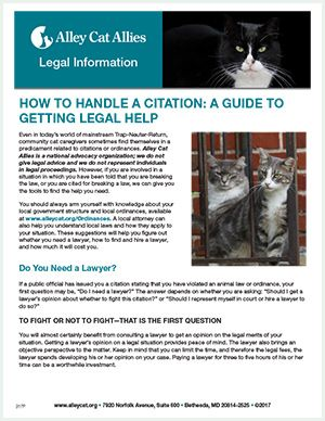 Alley Cat Allies   How to Handle a Citation: A Guide to Getting Legal Help
